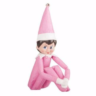 NEW Pink Christmas Elf on the Shelf Aubin Grove Cockburn Area Preview