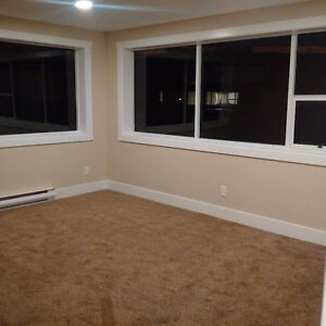 Room for rent/Roommate needed!