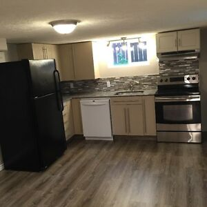 Large Newley renovated non-smoking 2 bedroom basement for rent!