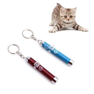 Dog Cat Kitten Pets LED Laser Lazer Pointer Pen Cute Paw Animation Game Play US