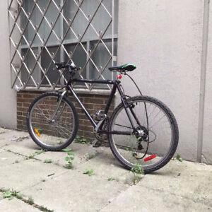 Famous brand Giant Champion light Carbon Fiber frame bike No.5