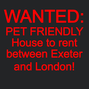 Employed Couple Looking for House to Rent near Exeter
