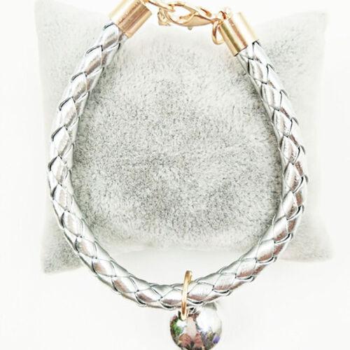 Hand Woven Cat Bell Collar Pet Dog Puppy Kitten Loud Adjustable Collar N7
