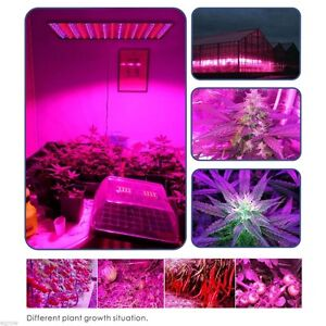 225 Blue Red Orange White Quadband LED Grow Light Hydroponic HPS London Ontario image 10