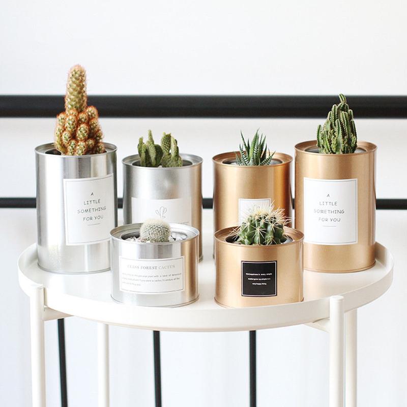 Creative Planter Flower Tin Can Pot Holder Organizer Storage