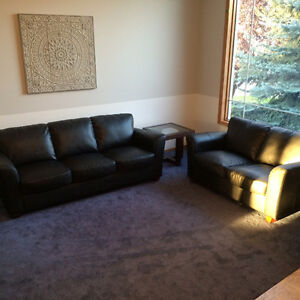 Black Leather Sofa and Love Seat