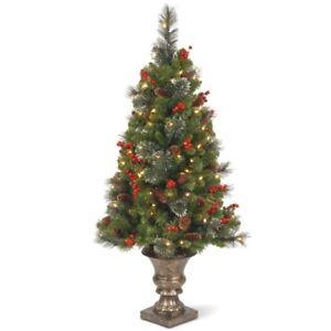 4' Crestwood Spruce Entrance Christmas Tree, New
