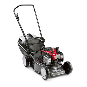 VICTA LAWN MOWER & MAKITA WHIPPER SNIPPER PACKAGE - $50 PER DAY Stirling Stirling Area Preview