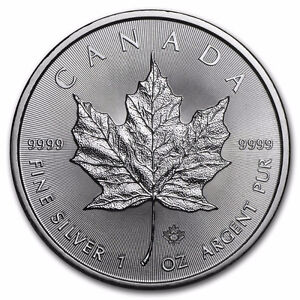 2016 Silver Maple Leaf Coins. Royal Canadian Mint Silver Coins Cornwall Ontario image 1