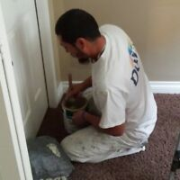 EXPERIENCED PAINTER WITH GREAT REFERENCES
