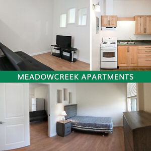 NEWLY RENOVATED! NEW APPLIANCES! Bachelor Apartment for Rent