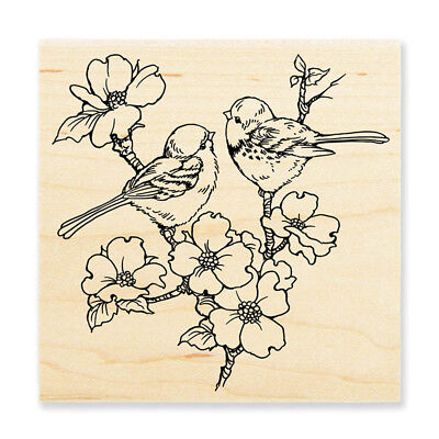 - STAMPENDOUS RUBBER STAMPS DOGWOOD BIRDS NEW WOOD STAMP
