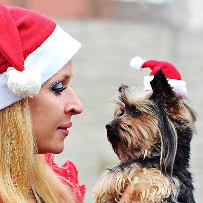 Hund Katze Hut Weihnachtshut Weihnachtsmütze Hundekostüm Haustier Geschenk