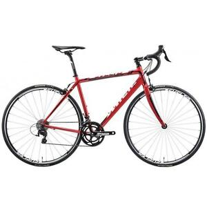 Miele Svelto RR Shimano 105 11 speed Road Bike