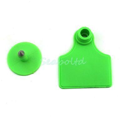 100pcs Green Blank Plastic Livestock Ear Tag Animal Tag For Goat Sheep Pig