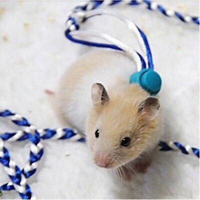 Color Random Rat Mouse Harness Rope Ferret Hamster Collar Leash Lead Glider