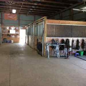 Horse Boarding   INDOOR ARENA  Events and More
