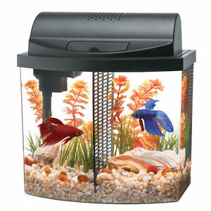 Beta Bow 2.5 MiniBow Desktop Aquarium Kit - perfect condition!