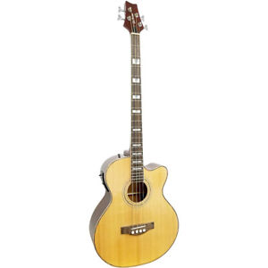 Acoustic Electric 4 String Bass and Carry Case