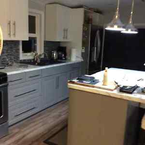 New renovated home for sale, new price Cambridge Kitchener Area image 6