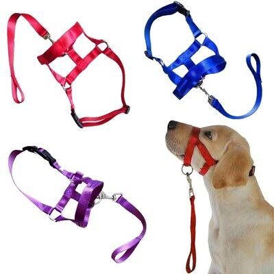 Nylon Pet Dog Muzzle Head Collar Gentle Leash No Pull Straps Training Halter Dog Muzzle Dog Leash