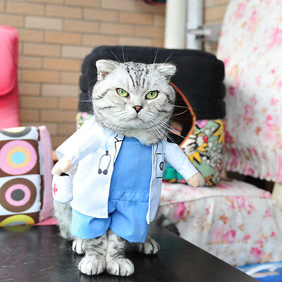 For sale Pet Dog Cat Halloween Costume Doctor Nurse Costume Dogs Jeans Cat Clothes Funny