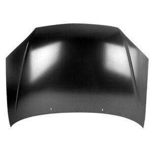 New Painted 2005-2007 Ford Focus Hood & FREE shipping