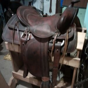 "Western saddle, SQHB - smooth 16"" seat."
