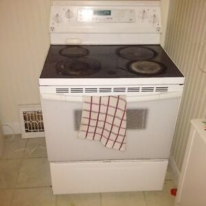 convection oven electric stover Kitchener / Waterloo Kitchener Area image 1