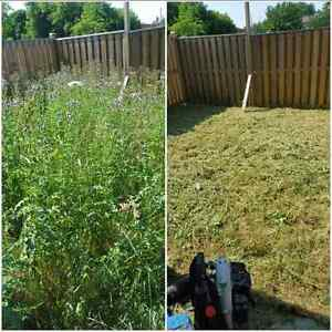 Weeds • Overgrown Yards • Tall Grass • Brush Cutting