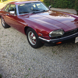 swap or trade or sell 1985 jag xjs
