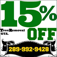 Quality tree removal service, Ash,Pine,Maple...