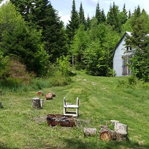 Terre à bois avec bâtiments