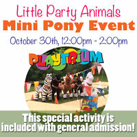 Indoor Ponies at the Playtrium !!  Ya, that's right!