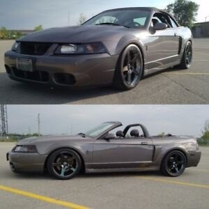 2003 SVT Cobra Convertible