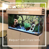 Love Aquariums? Like to Work Independently? Join our Team!