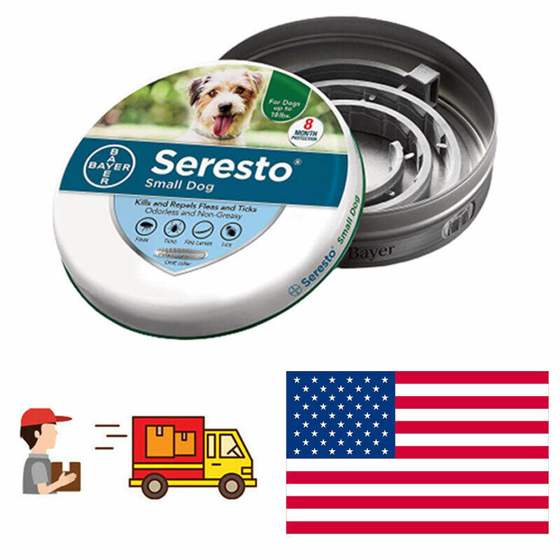 USA Bayer Protection For Small Dog 8 Months Control Flea And Seresto Tick Collar