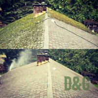 D & G Gutter Cleaning And Moss Removal