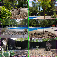 Rainforest Escape Landscaping and Tree Removal Services