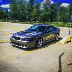 2001 Saleen supercharged Mustang  For sale ?Trade