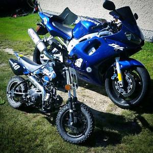 2800 obo safetied  Yamaha r6 2001