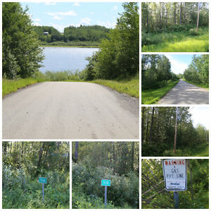 UPPER MANN LAKE - LAKE FRONT LOT