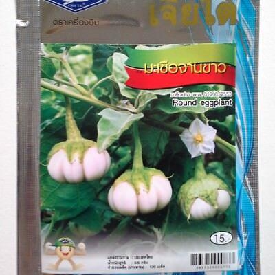 5 g. / 130 seeds Round Eggplant White Thai Vegetable Plant Chia Tai, usado comprar usado  Enviando para Brazil
