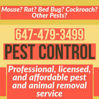 GUARANTEED MOUSE, RAT, BED BUG CONTROL GOV LICENSED 647-479-3499
