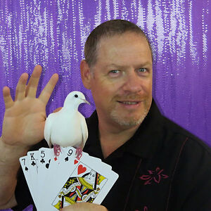 Magician for Birthday Party Entertainment Belleville Belleville Area image 5