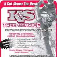 COMPLETE TREE CUTTING SERVICES 24/7