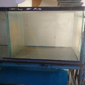 Aquarium Stands and Fish tanks