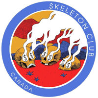 SKELETON CLUB looking for - keys/synth player