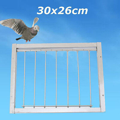 Bob Wires Bars on Frame Entrance Tumbler For Racing Pigeon Loft Birds Silver UK