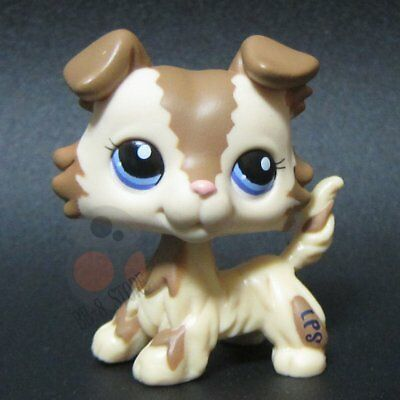 Littlest Pet Shop* LPS #2210 Brown Cream Collie Puppy Dog w/ Blue Eyes bb